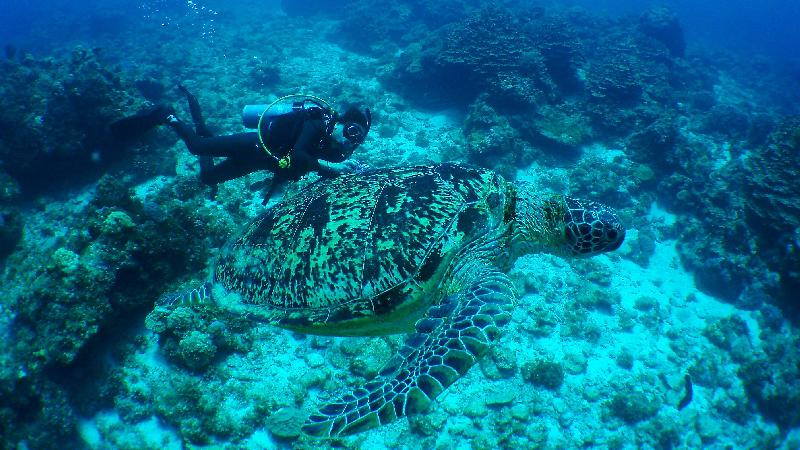 記事画像_アドバンスダイバーになれば、世界の海が遊び場になる!!