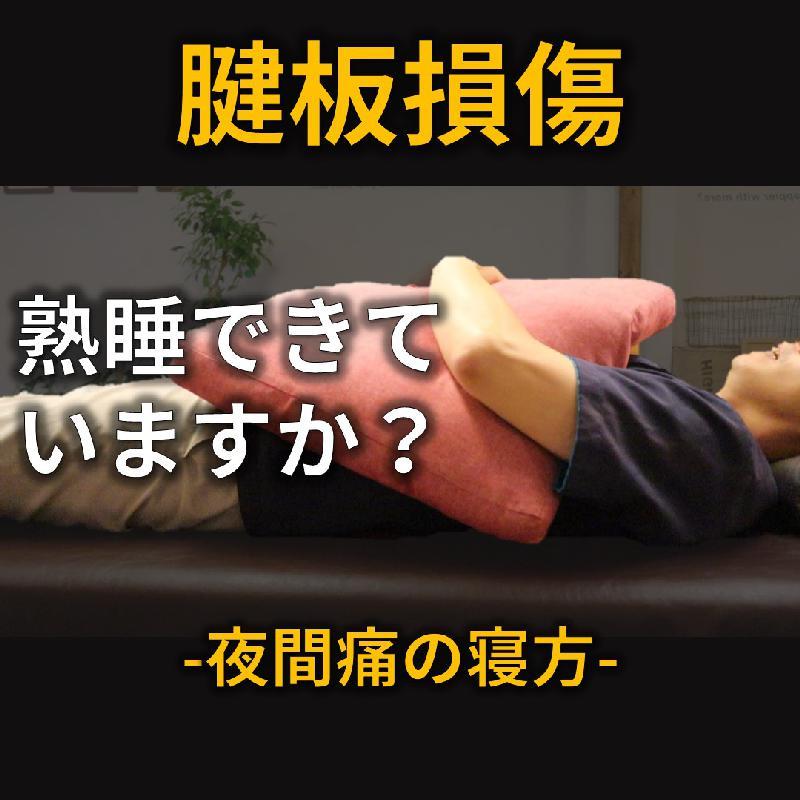 Seitai Zen繕