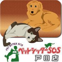 ペットシッターSOS戸田店のメイン画像