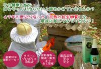 寺尾養蜂日本支社 PickUp画像