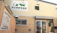 麻の葉動物病院のメイン画像