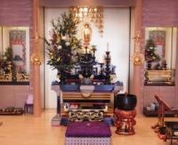 宗教法人浄土真宗 円照寺のメイン画像