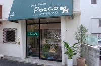 ドッグサロン ロッコのメイン画像