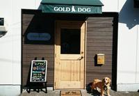 GOLD DOGのメイン画像