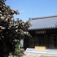 観音寺 (禅宗)のメイン画像