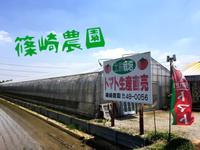 篠崎農園のメイン画像