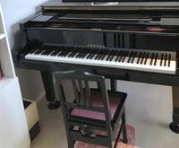 カンターレ音楽教室 画像