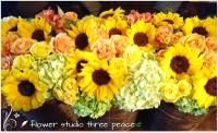 flower studio スリーピース PickUp画像