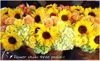 flower studio スリーピースのメイン画像