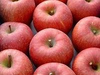 静谷りんご園 画像