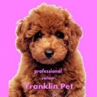 フランクリンペット PickUp画像