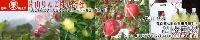 片山りんご株式会社 画像