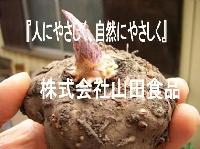 株式会社山田食品のメイン画像