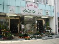 (有) 美 花 みはな生花店のメイン画像