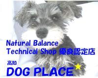 DOG PLACE PickUp画像