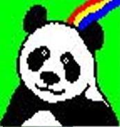 カイロプラクティック パンダ整体院のメイン画像
