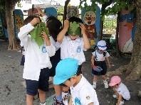 するが幼稚園のメイン画像