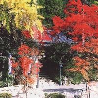 天台宗 仁比山地蔵院 画像