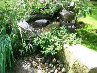 蔵王自然村のメイン画像