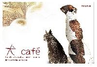 犬Cafe 画像
