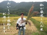 おいしいお米の通販 博多の米屋 のと米店 PickUp画像