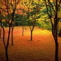 名古屋緑地建設株式会社 画像