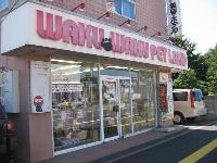 わくわくペットランド(有)札幌白石店 PickUp画像
