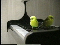 下関レトルピアノ・エレクトーン教室のメイン画像