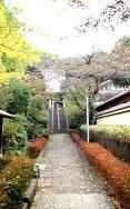 東 林 寺のメイン画像
