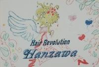 Hanzawa 画像
