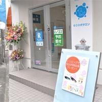 ECO犬パーク わんちゃんの保育園 PickUp画像