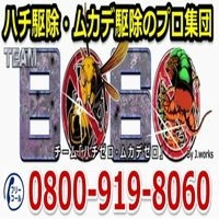 ハチ駆除・ムカデ駆除のTEAM8060 画像