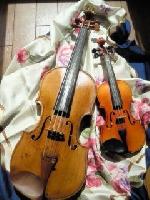 高須友利恵ヴァイオリン教室 画像