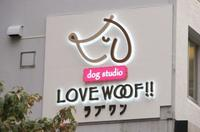 ドッグスタジオ ラブワン品川芝浦 PickUp画像