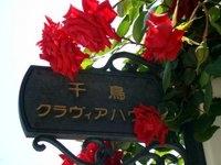 古賀市 ピアノ教室 千鳥クラヴィアハウス PickUp画像