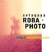 setagaya ROBA・PHOTOのメイン画像