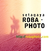 setagaya ROBA・PHOTO PickUp画像