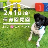 犬のほいくえんChiffon シフォンのメイン画像