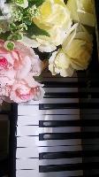 あいみーピアノ教室 PickUp画像