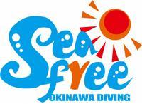 沖縄 ダイビングショップ シーフリーのメイン画像